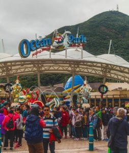 Day 3 at Ocean Park in Hong Kong Were busilyhellip